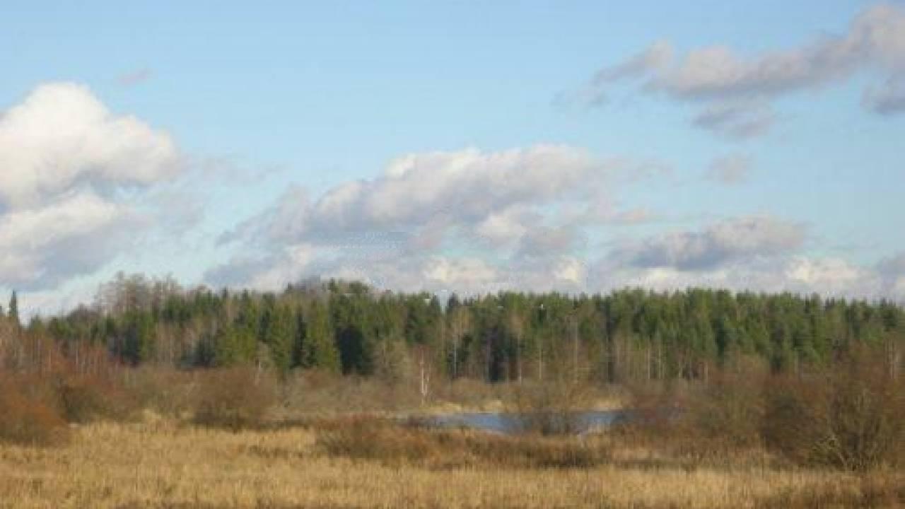 Продажа земельного участка Озера